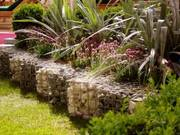 Garden design and maintenance service in South London