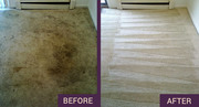 Steam carpet cleaning Sutton